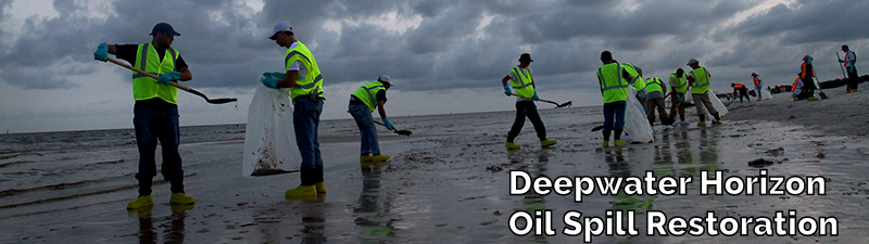 Deepwater Horizon Oil Spill Restoration